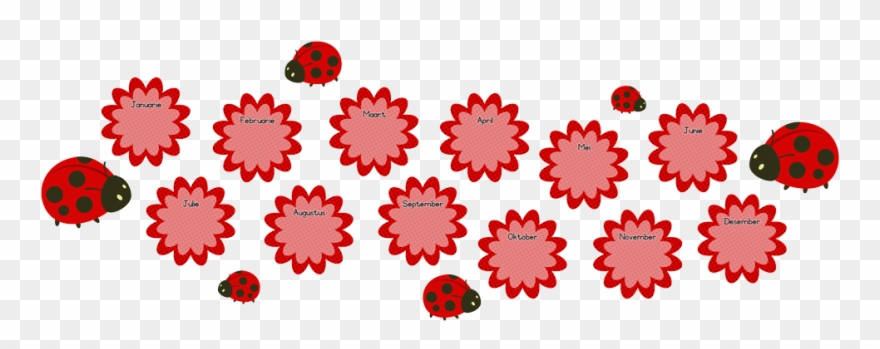 Ladybugs clipart banner. Picture of flowers birthday