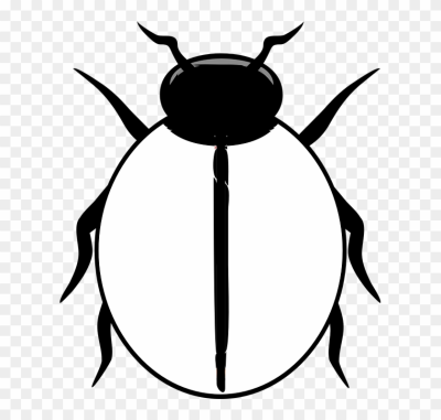 Free png images dlpng. Ladybugs clipart blank