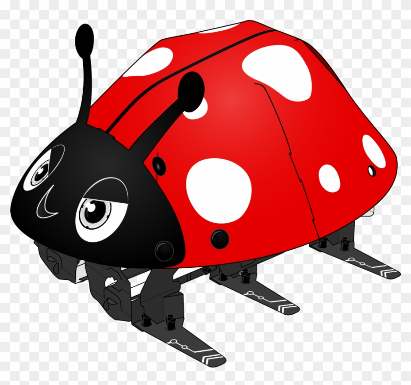 Ladybugs clipart body. Insect free transparent png
