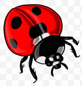 Beetle drawing clip art. Ladybugs clipart dead
