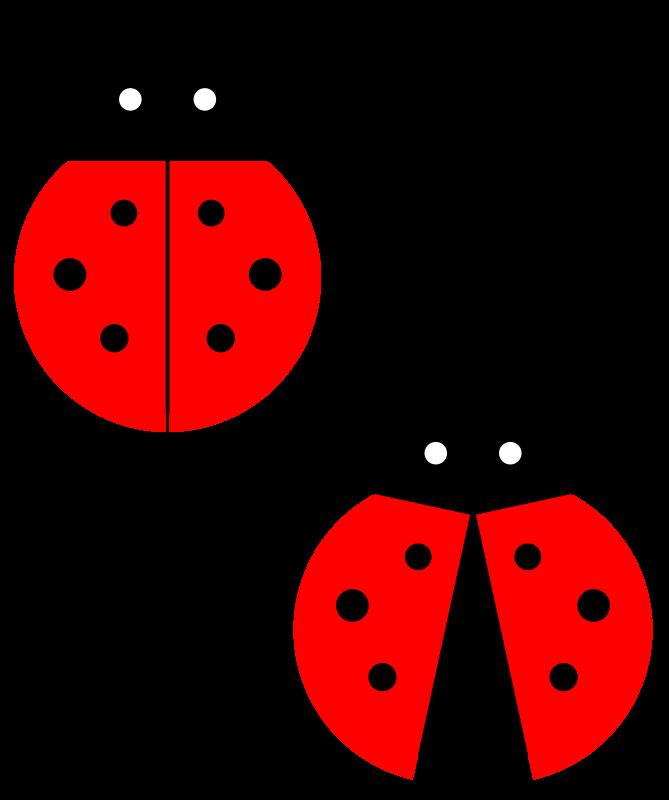 Ladybugs clipart junebug. Beelte simple lady bug