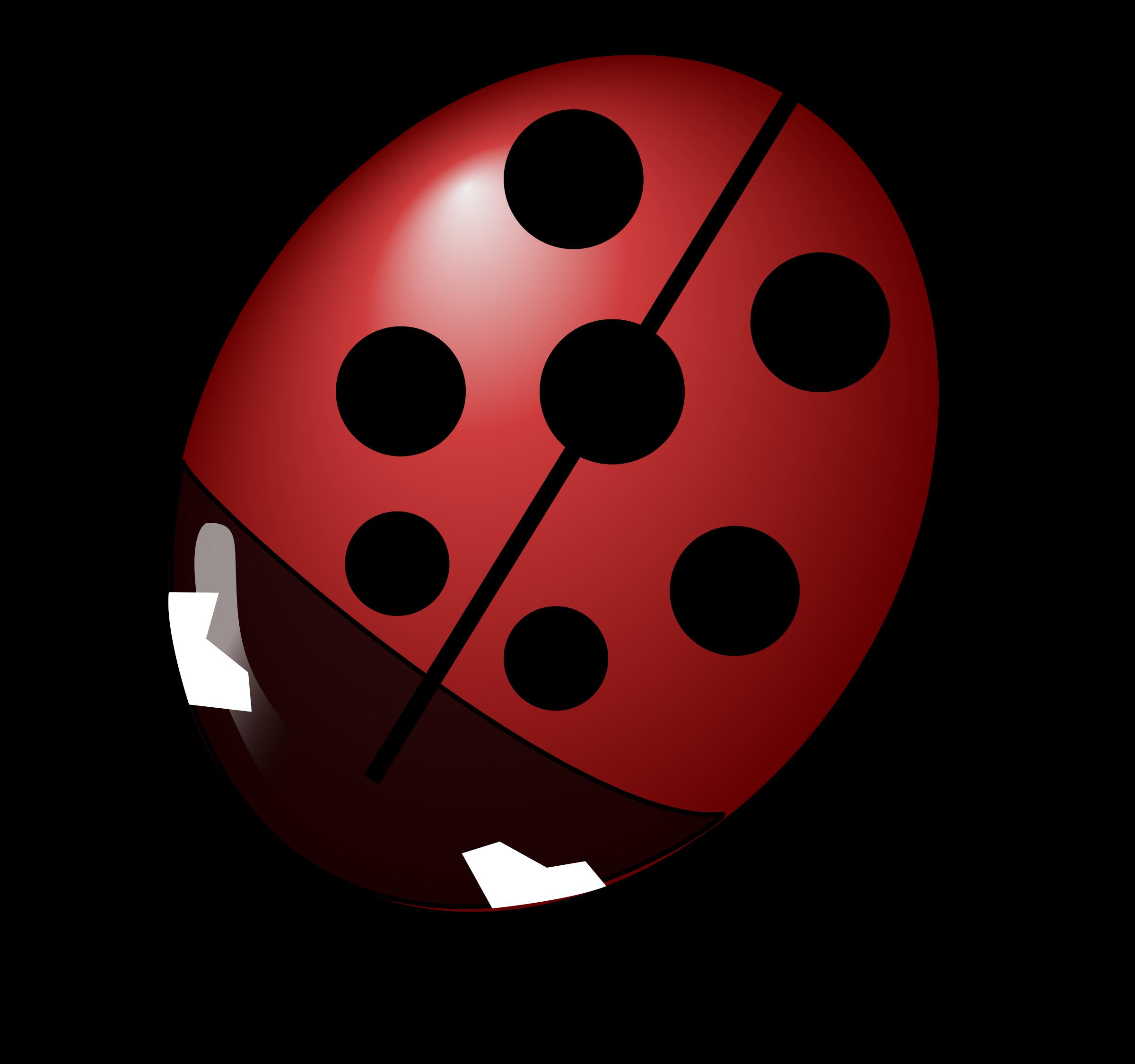 Ladybugs clipart l be for. Ladybug big image png