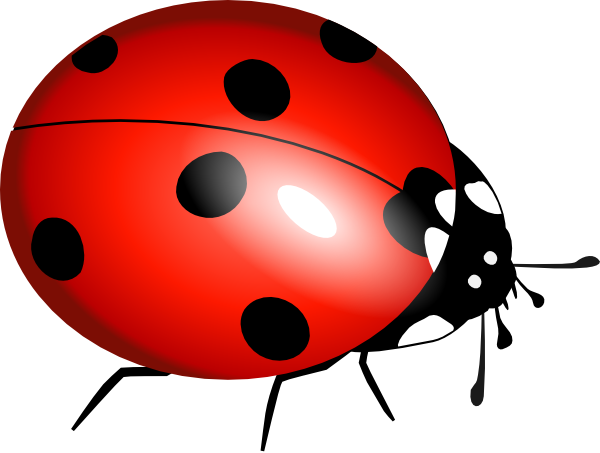 Ladybug clip art at. Ladybugs clipart l be for