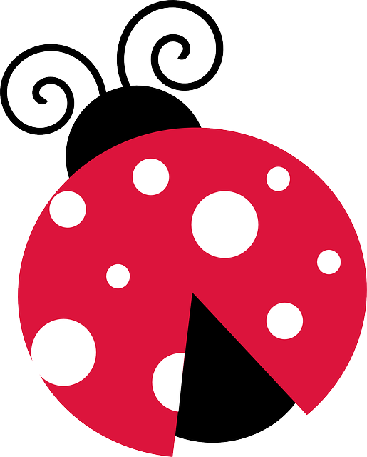 Png transparent images all. Ladybugs clipart one object