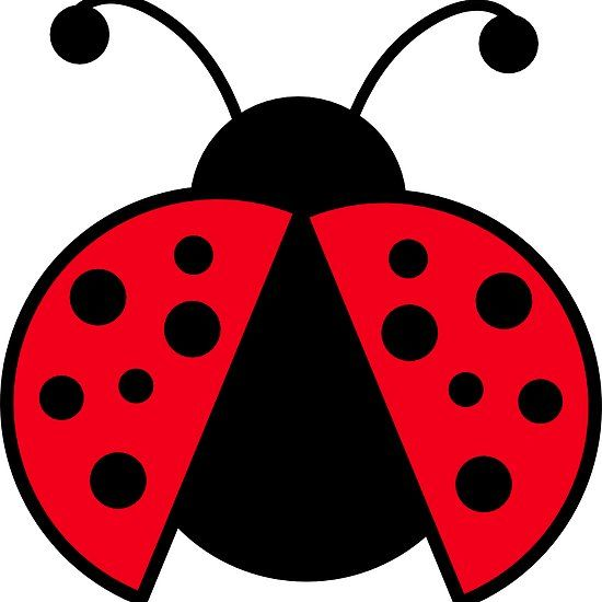 Ladybugs clipart printable. Ladybug graphic crafts clip