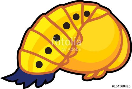 Ladybugs clipart pupa. Cartoon yellow of ladybird