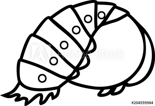 Coloring page cartoon of. Ladybugs clipart pupa