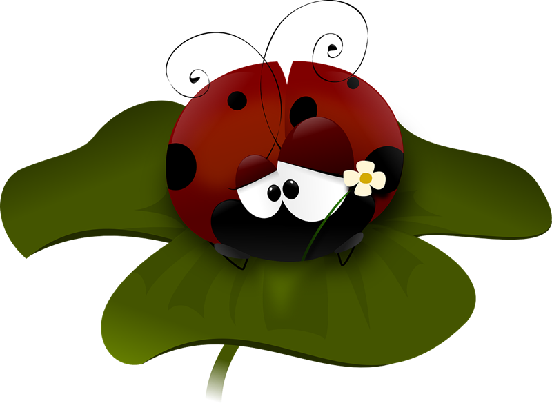 Free animated ladybug download. Ladybugs clipart school