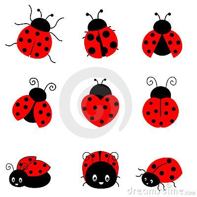 Cartoon ladybug cute colorful. Ladybugs clipart sketch