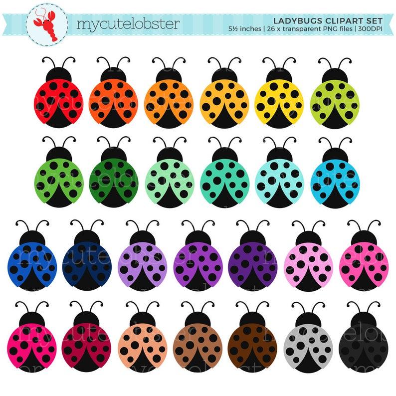 Rainbow set ladybirds bugs. Ladybugs clipart small