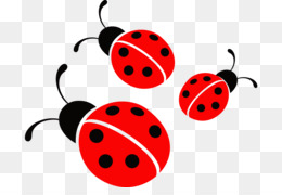 Ladybugs clipart small. Little png transparent