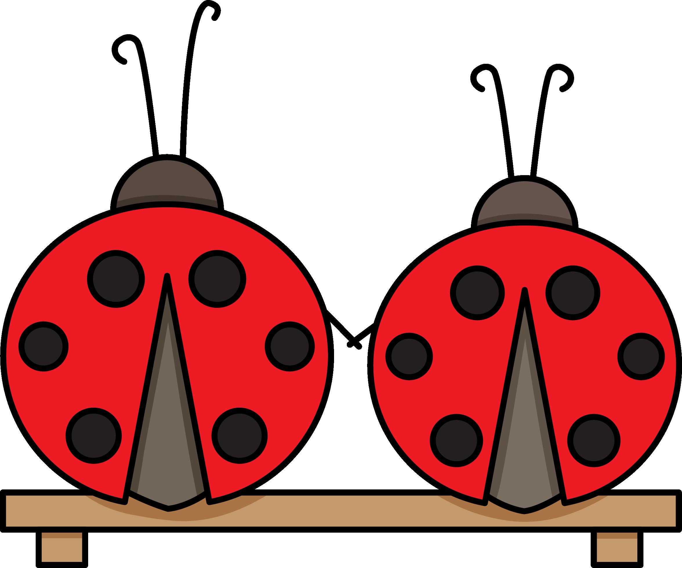 Ladybugs clipart symmetrical. Ladybugscolor