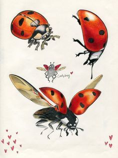 Ladybugs clipart vintage. Pin by birgit keys