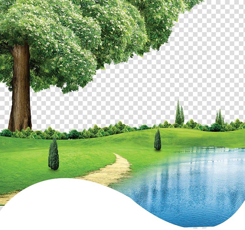 Lake clipart grass tree. Near painting coreldraw green