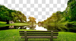 Lake clipart spring pond. Surrounded by green plants