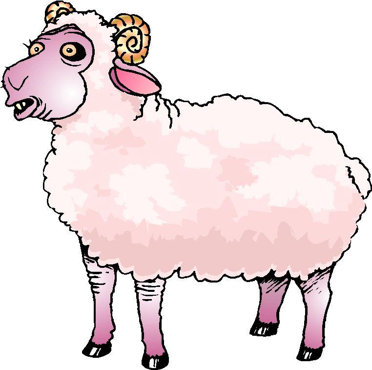 Image cliparting com . Lamb clipart 2 sheep