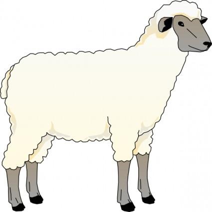 Clipart sheep. Lamb black and white