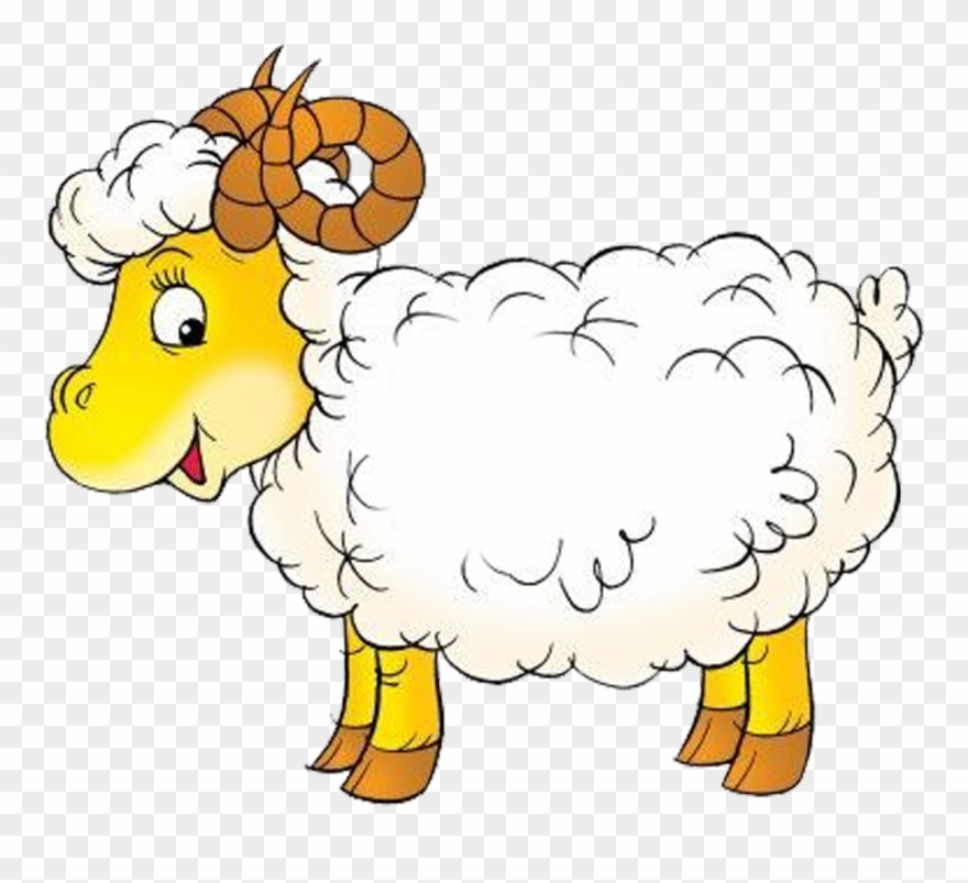 Sheep . Lamb clipart baby goat