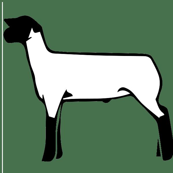 Free show clip art. Lamb clipart club lamb