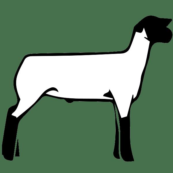 Free Show Lamb Clip Art