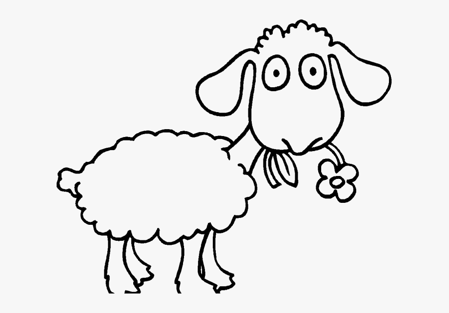 Lamb clipart colored sheep. Drawing color to cliparts