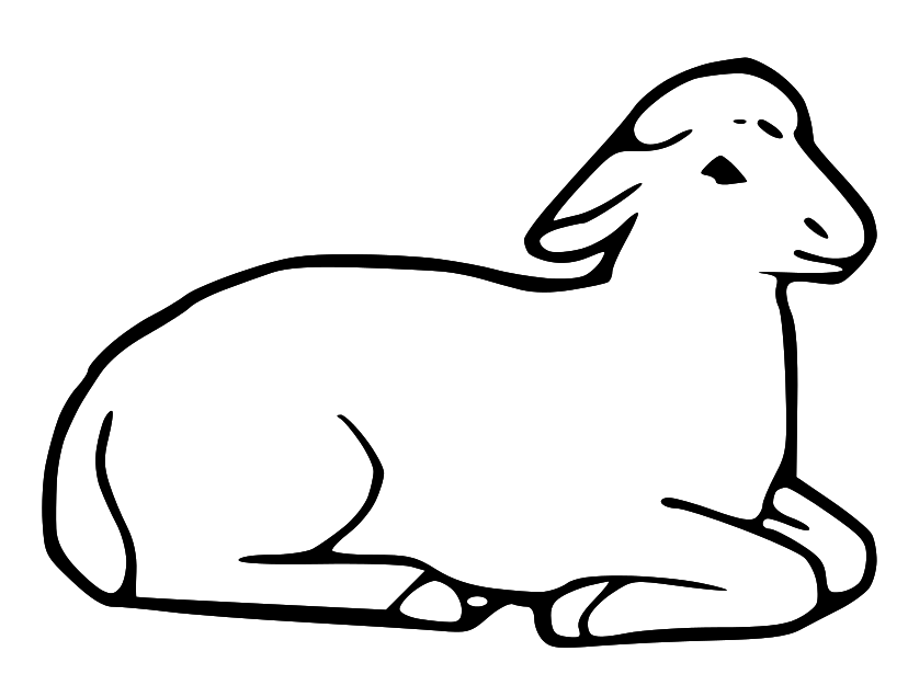Laying down pages art. Lamb clipart colouring page
