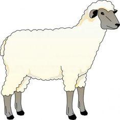Lamb clipart female sheep.  best lambs images