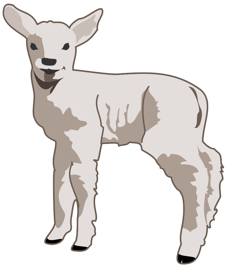 Image cliparts co young. Lamb clipart lamb to slaughter