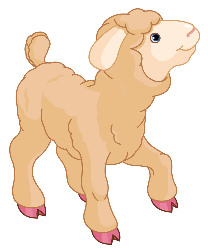 Lamb clipart lamb to slaughter. Sheep and mutton clip