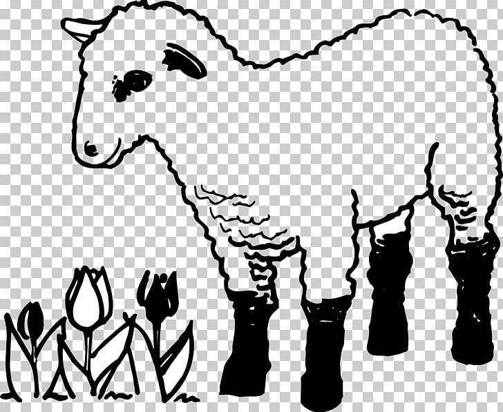Parable of the coloring. Lamb clipart lost sheep