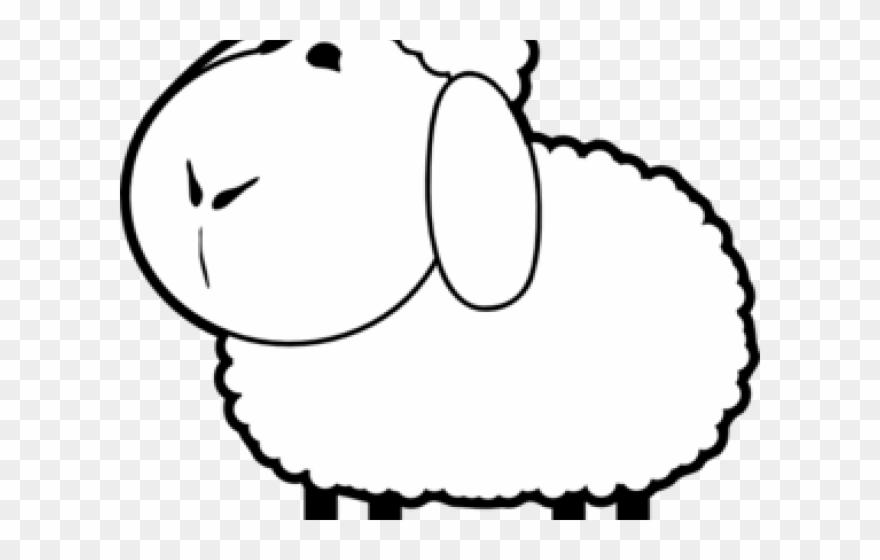 Cartoon transparent . Lamb clipart many sheep