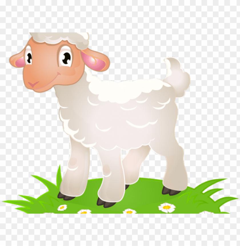 Lamb clipart many sheep. Shee png image with
