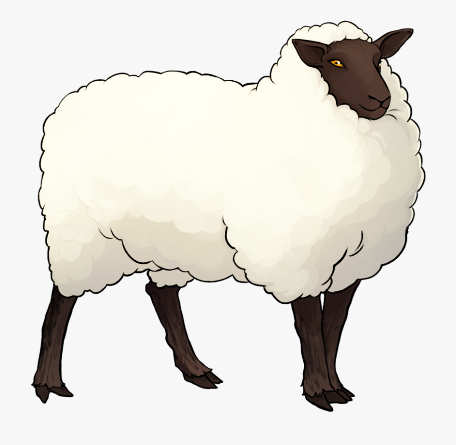 Lamb clipart merino sheep. Outline free cliparts on