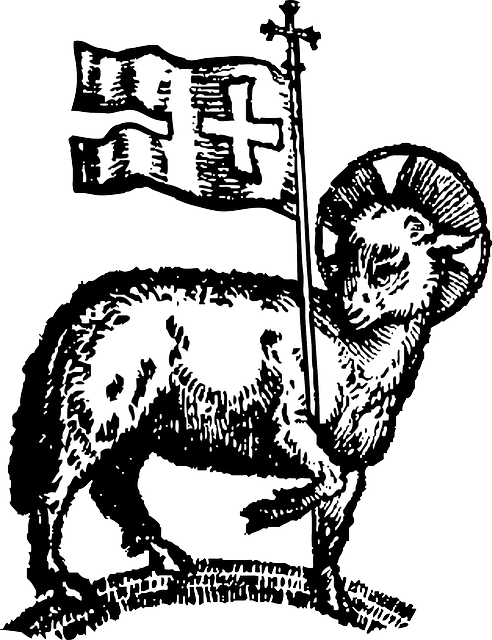 Lamb paschal lamb