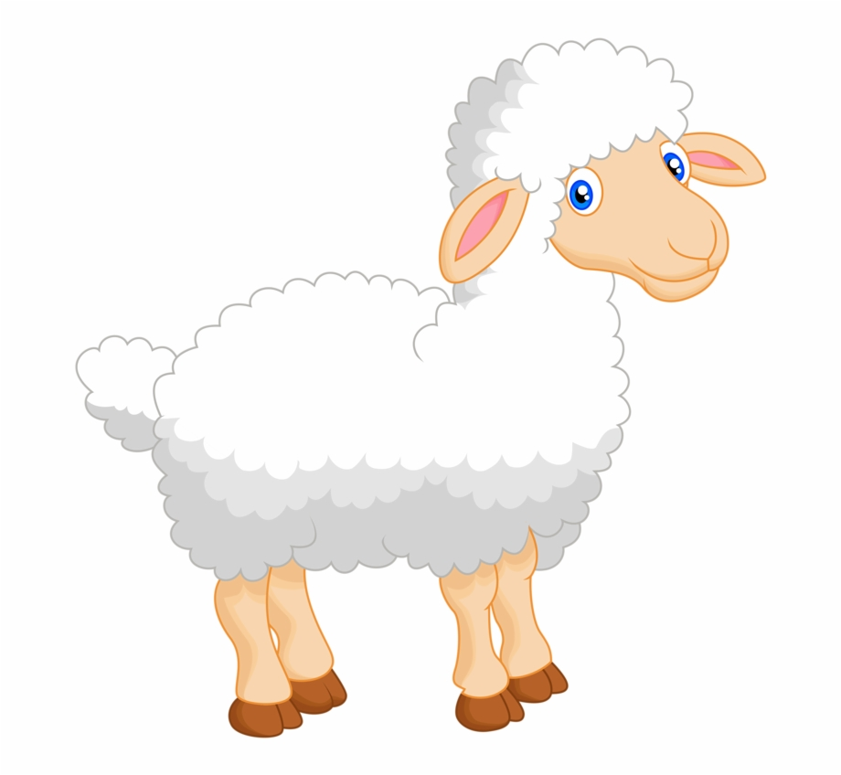 Lamb clipart shee. Sheep animals cute funnypictures