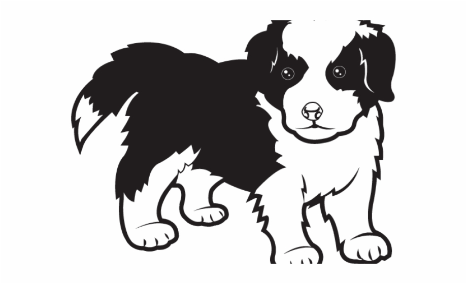 Hd border collie puppy. Lamb clipart sheep dog