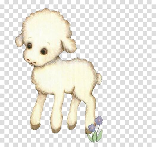 Lamb clipart sheep dog. Breed cute little transparent