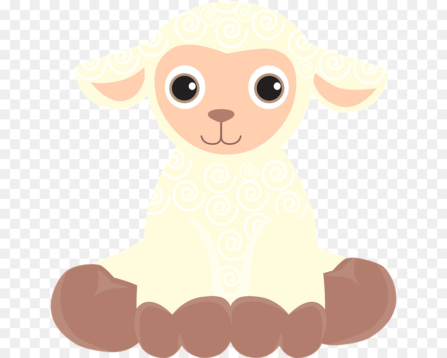 Lamb clipart sheep drawing. Cartoon transparent