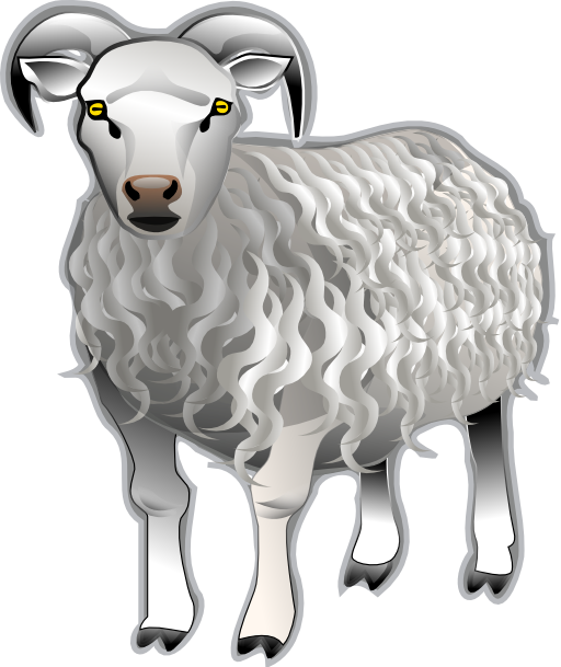 Sheep i royalty free. Lamb clipart vertebrate