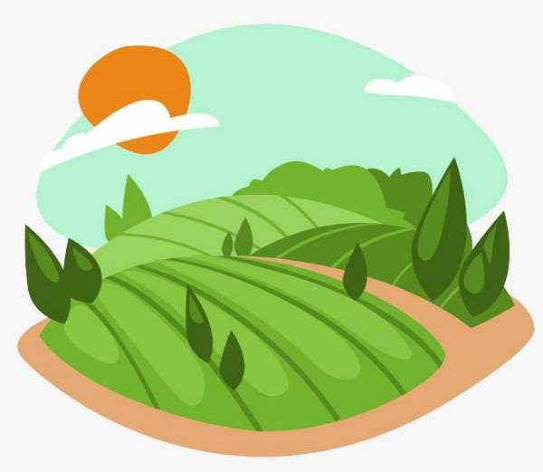 Green png cultivate food. Land clipart