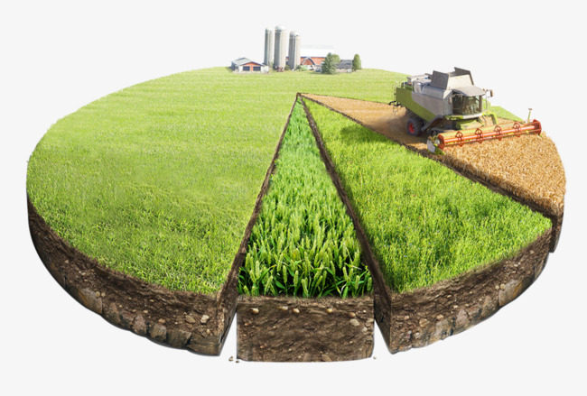 Ratio farming agriculture round. Land clipart