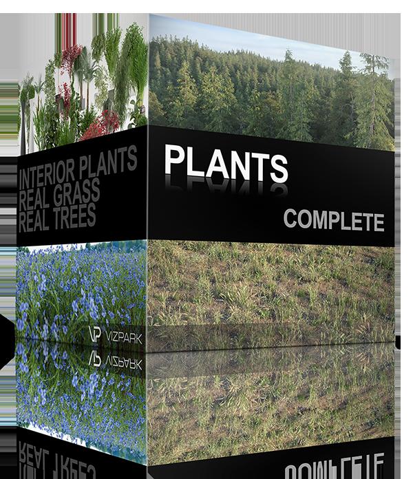 Complete d models of. Plants clipart vegetation