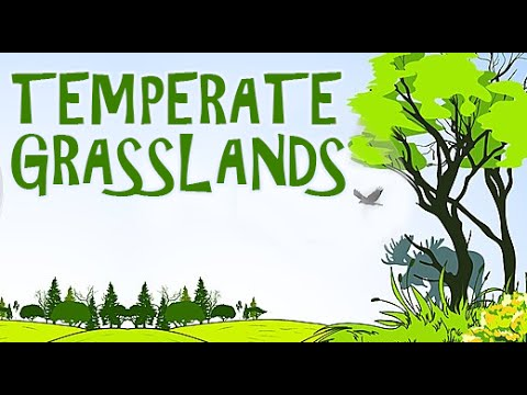 Land clipart temperate grassland. Lands a visit to