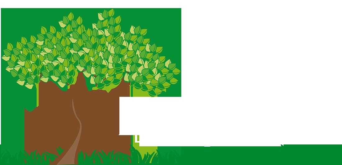 Landscape clipart landscaping maintenance. Jordy s lawn
