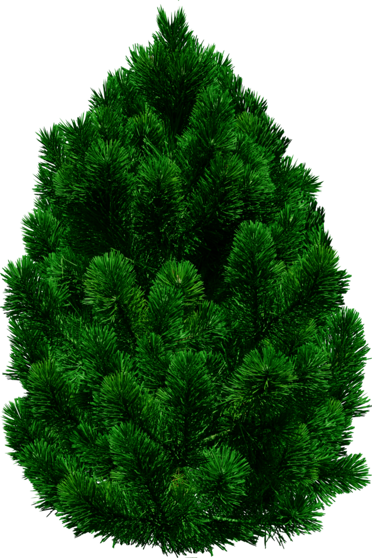 Png by dbszabo on. Landscape clipart pine tree