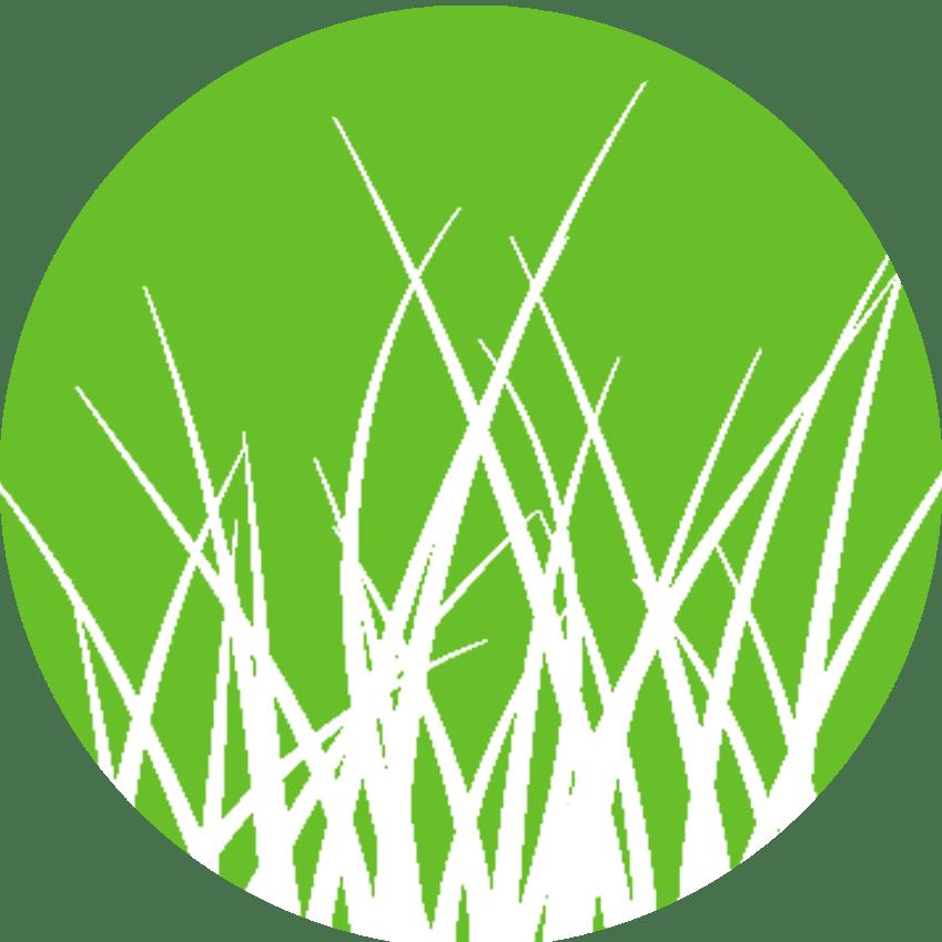 Landscaping clipart design landscape. Fairview beautiful landscapes personal