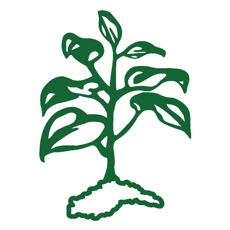 Carolina greenscape management sought. Landscaping clipart grounds maintenance