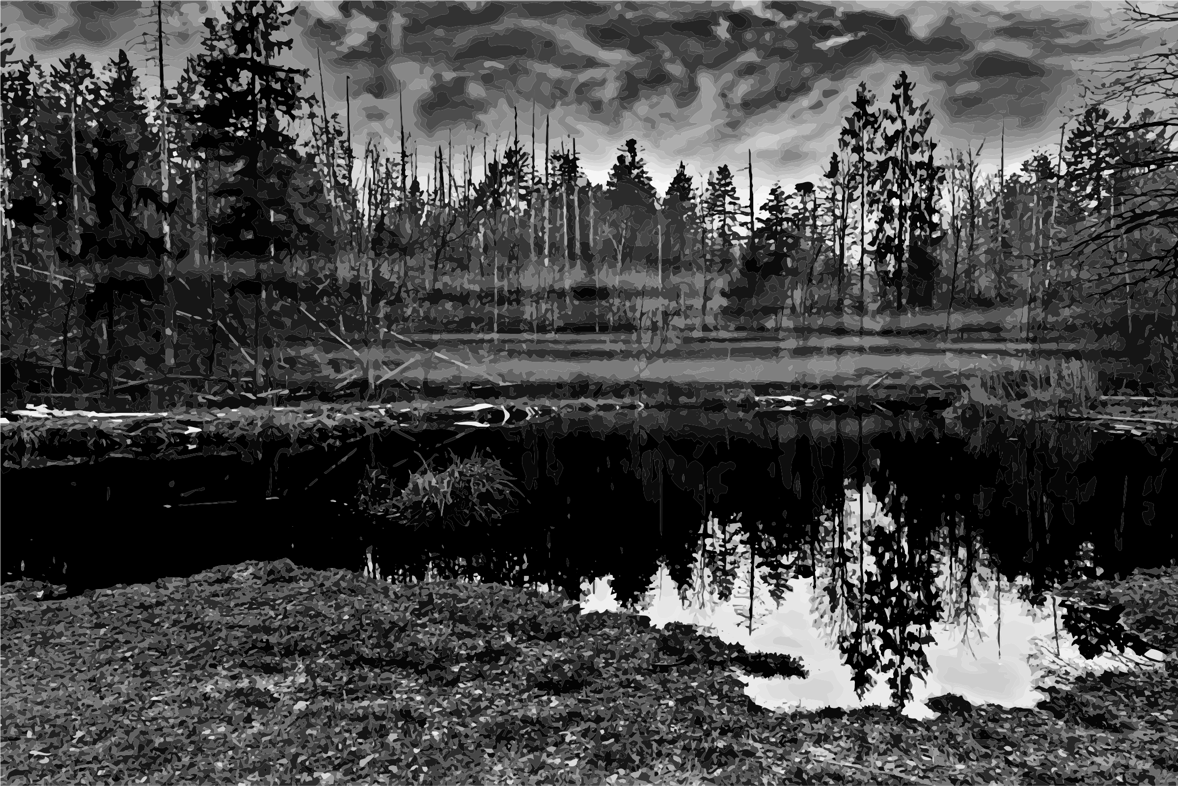 Wet clipart damp. Swamp grayscale big image