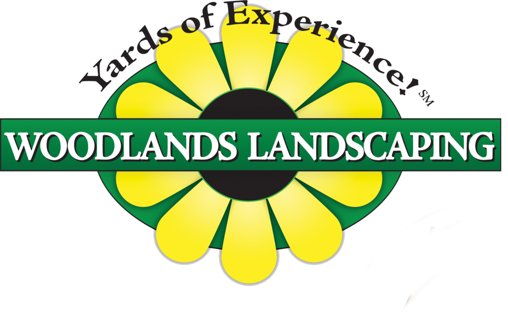 Outside clipart country landscape. References woodlands landscaping