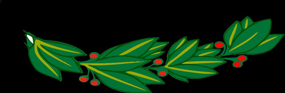 Laurel 2 leaves
